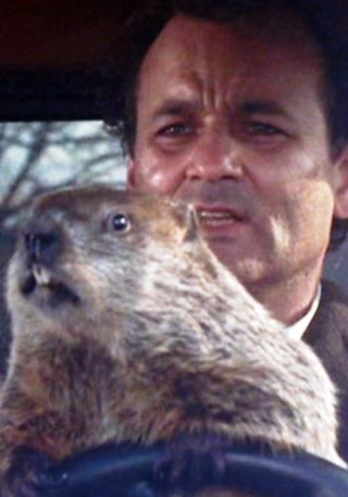 Groundhogday-billmurray